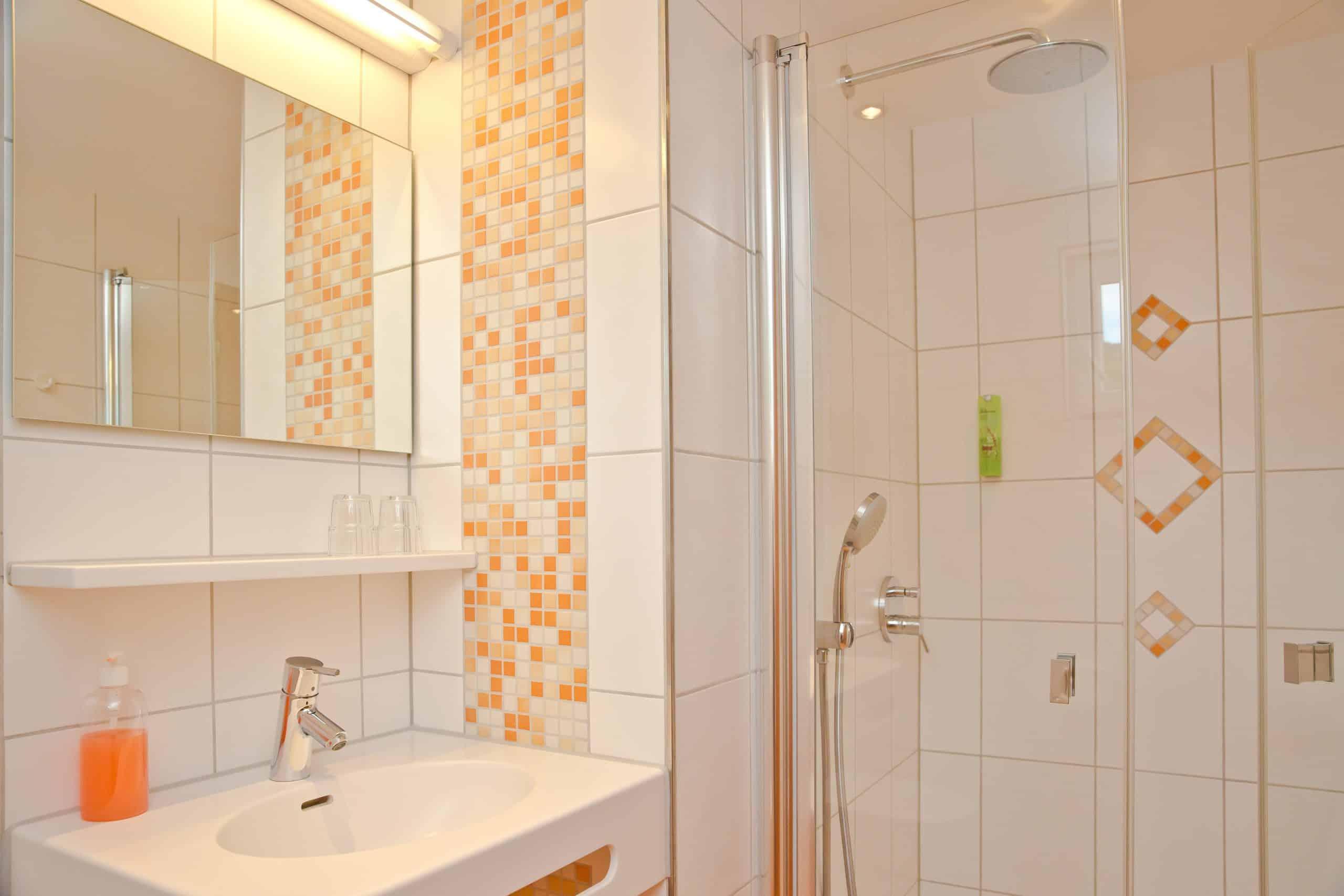 DZ-Komfort-Dusche